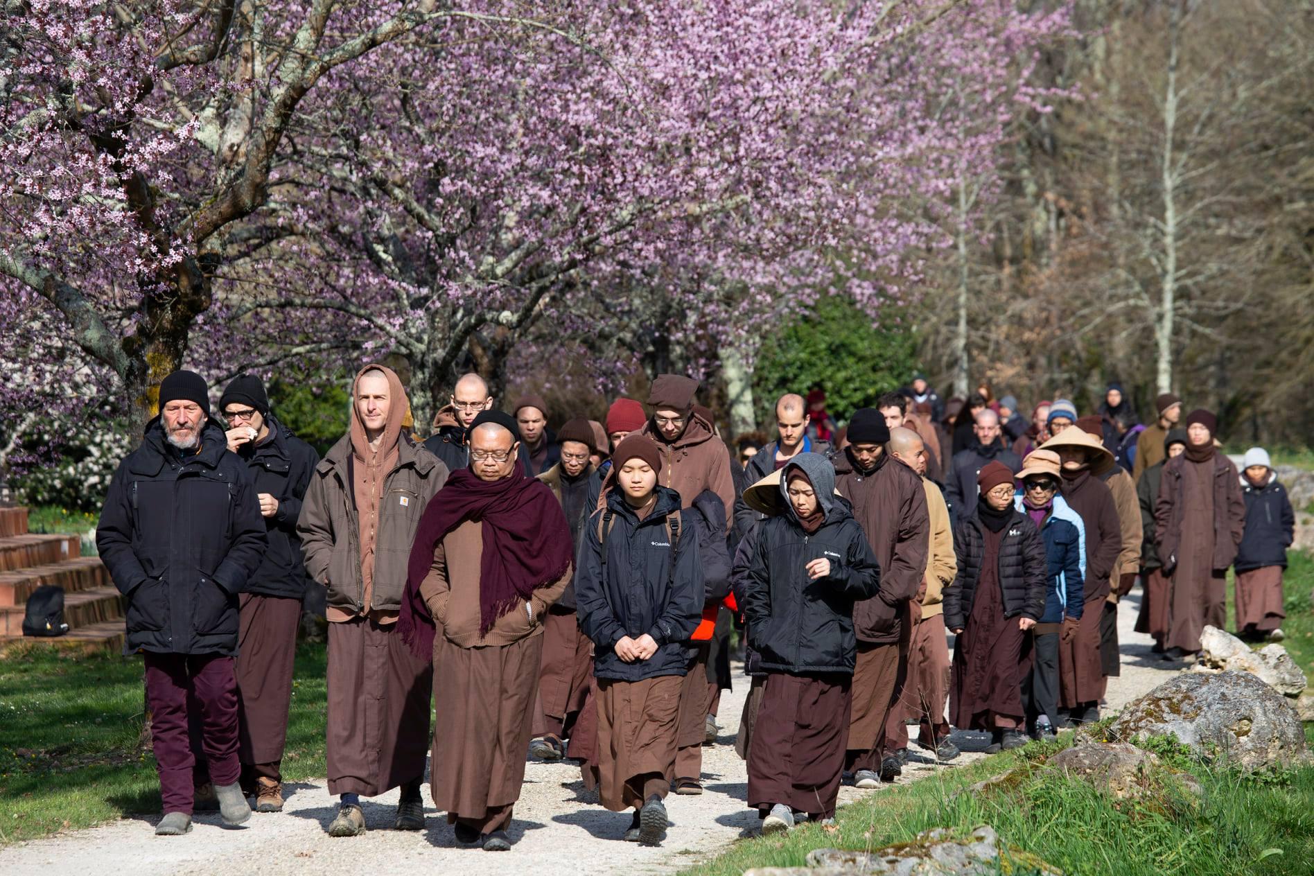 Письма о любви к Матери-Земле Тик Нат Хана и его учеников