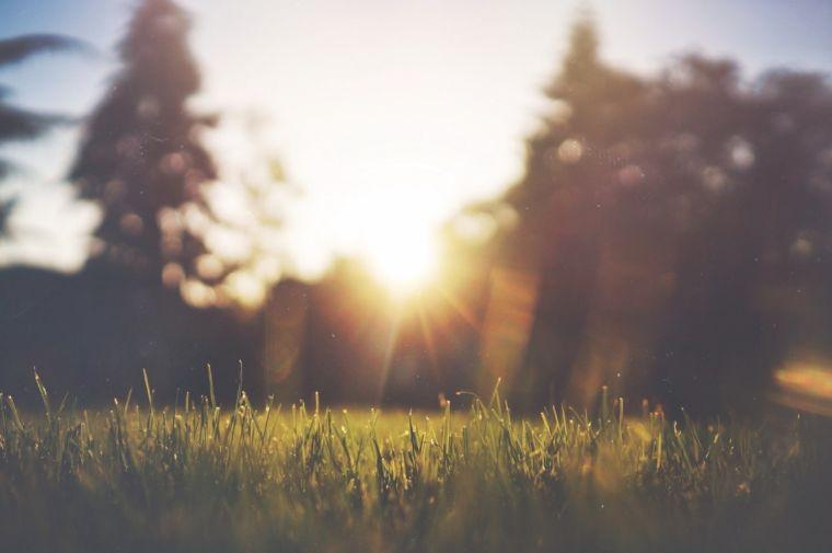Новая жизнь: воскресение, восстановление и надежда в иудаизме и христианстве