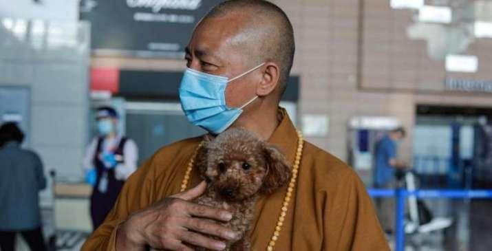 Буддийский монах в Китае спасает тысячи брошенных животных