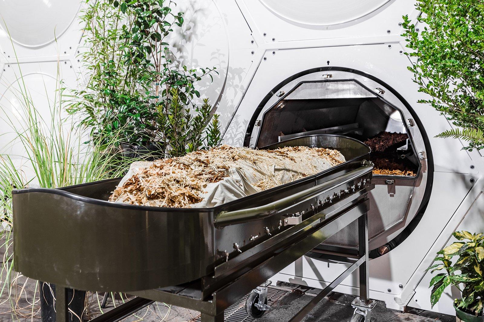 Несмотря на сопротивление католиков, в США легализуют компостирование человеческих останков