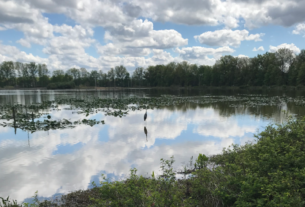 Сезон Творения: Вода как дар жизни