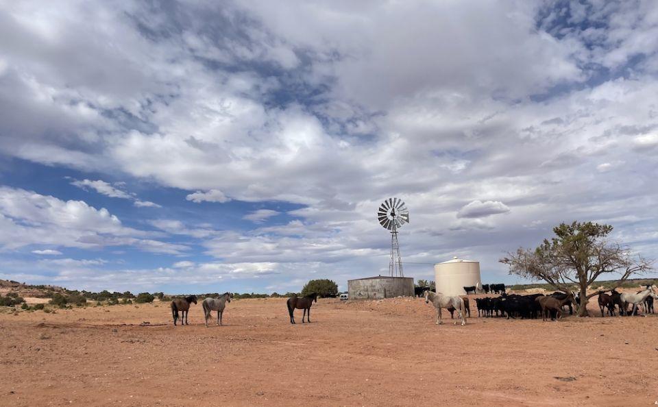 Сезон Творения: Засуха и наводнения в резервации навахо
